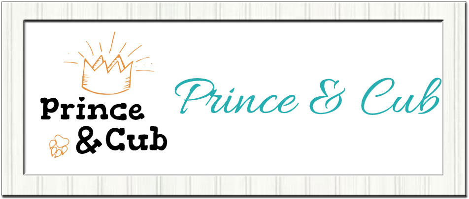 https://www.thehandcraftednappyconnection.com.au/images/framed-banner-princecub.jpg